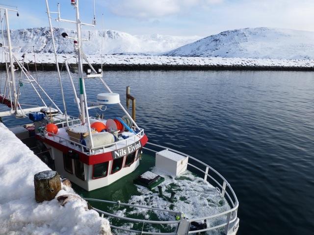 Hurtigruten_Norwegen_Johanna_Stoeckl_2014_005