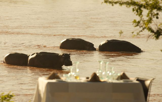 Lodge The Retreat Selous Game Reserve Tansania Hippos dinner.jpg