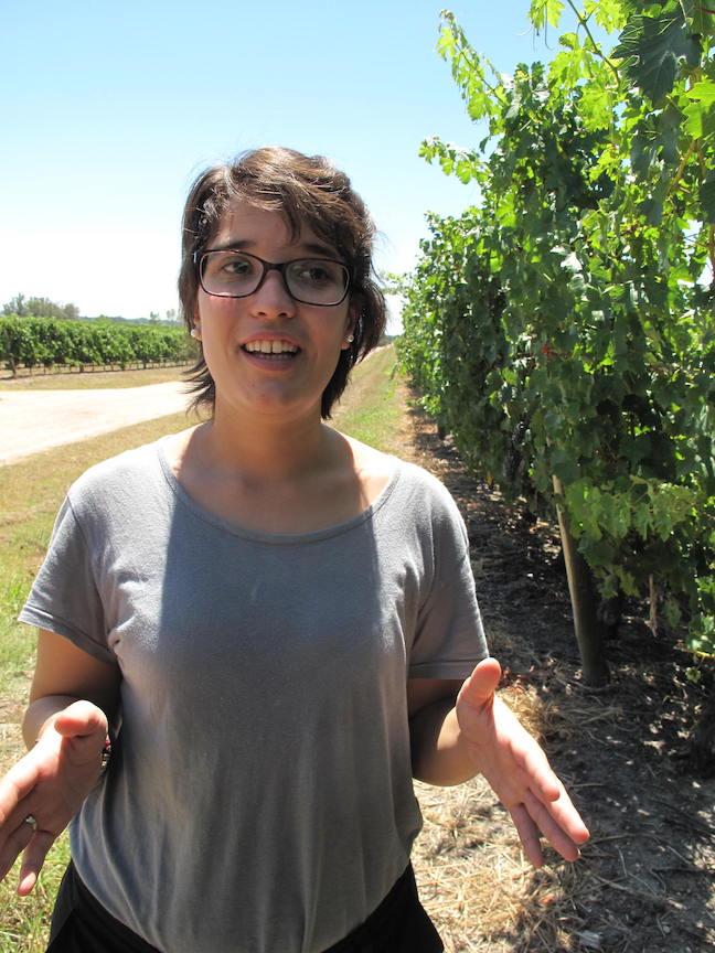 Wein aus Uruguay Bodegas Juergen Kagelmann 09