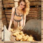 Heiße Kartoffel Kartoffelkalender