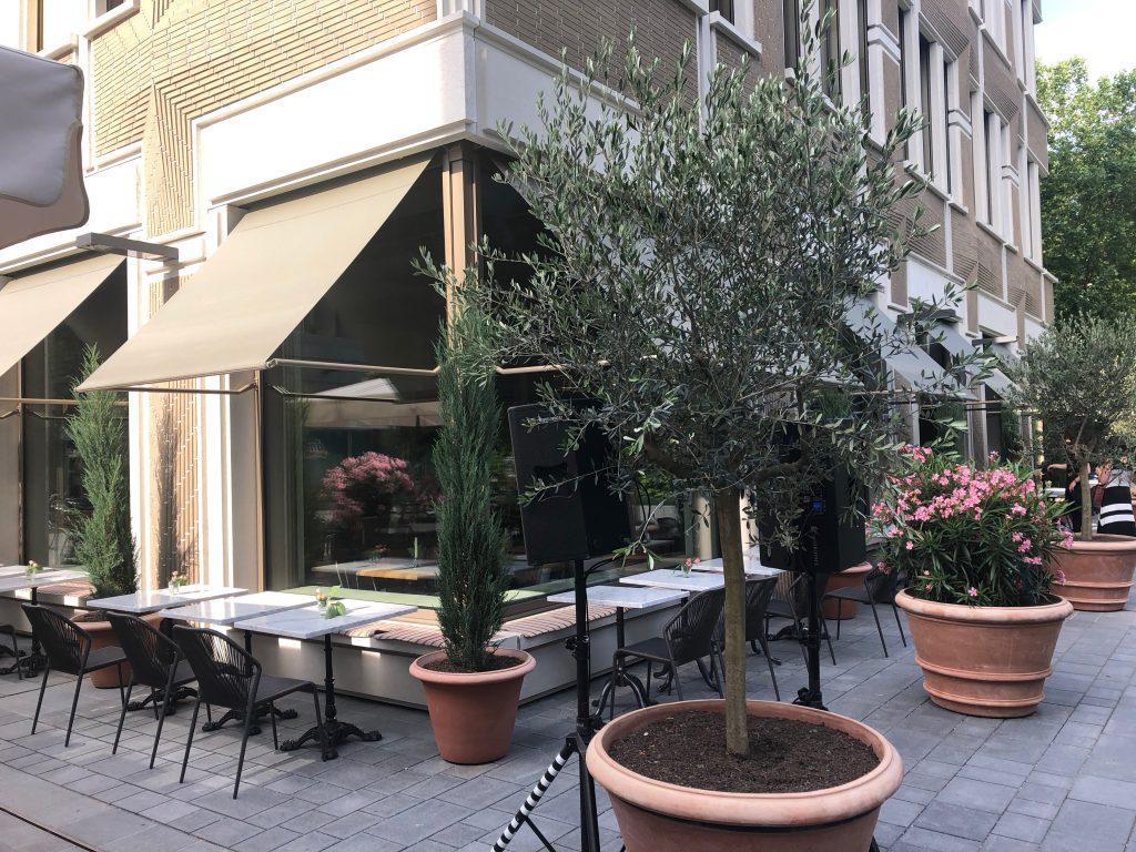der halbitaliener fabio spagna mochte im restaurant den gasten sein italien moglichst authentisch nahebringen mit diesem konzept will marta den zeitgeist